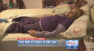 dog bite attorneys Houston Smith & Hassler personal injury